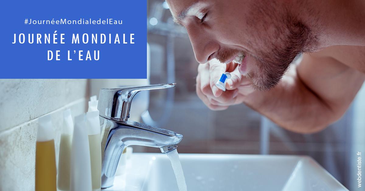 https://dr-surmenian-jerome.chirurgiens-dentistes.fr/Journée de l'eau 2
